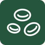 Realfood - Icon